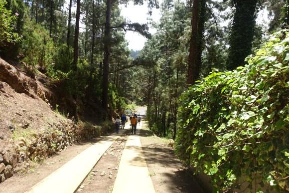 The path back to the minibus from the lava cave (Cueva de Viento) in Icod de Los Vinos