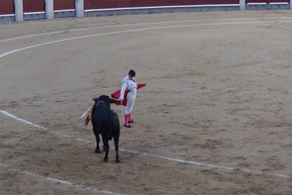 Matador about to make the kill in Plaza de Toros, Madrid