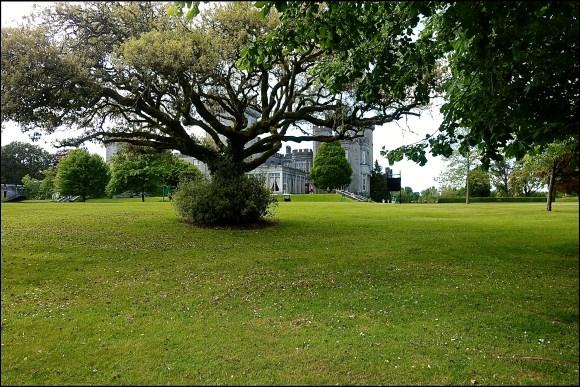 Dromoland Castle grounds
