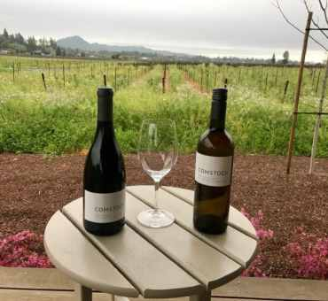 The Ultimate Wine Tasting Experience in Sonoma: The Residence at Comstock Wines