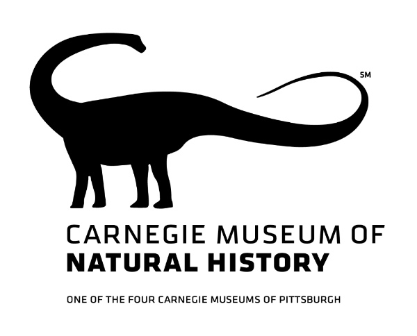 Visitors Inspire New Carnegie Museum of Natural History