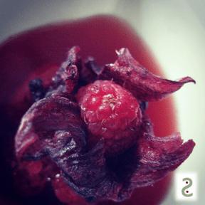 Parfum à boire : hibiscus, framboises, pralines roses http://wp.me/p389oa-1cE