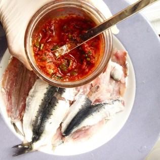 sardine marinée1