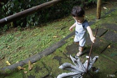 Quand ils sont petits, un rien les amusent - Parc d'Emeraude