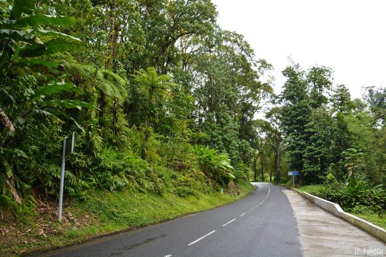 route-de-la-trace-17
