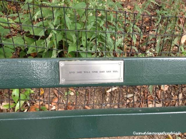 Central Park : banc