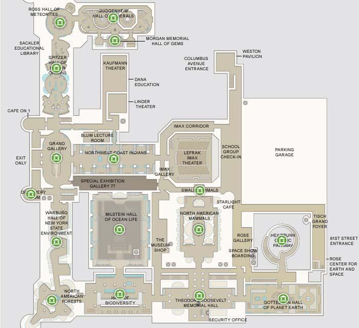 Musée dhistoire naturelle New york salle