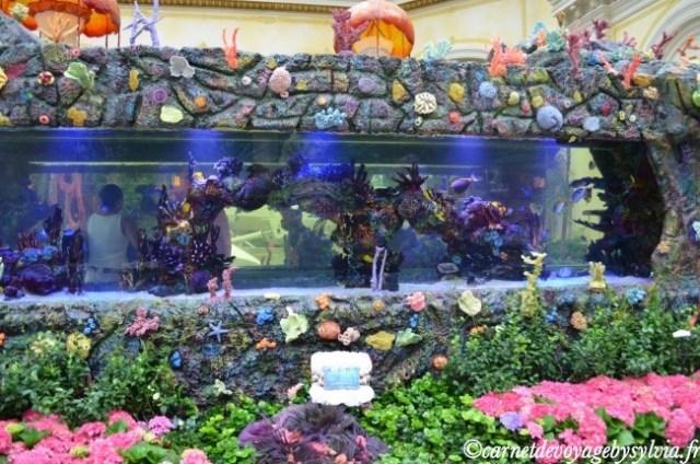 Aquarium du Bellagio