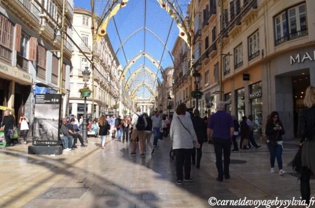 la rue piétonne et commerçante Marqués de Larios - Malaga