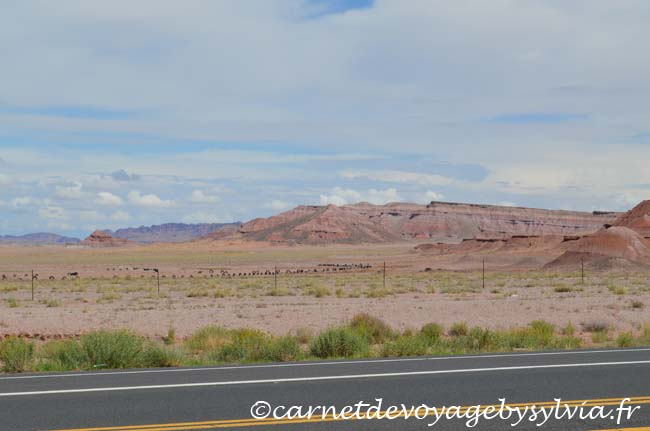 Monument Valley sur la Highway