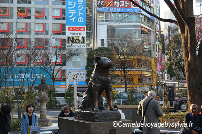 statue du chien Hachiko