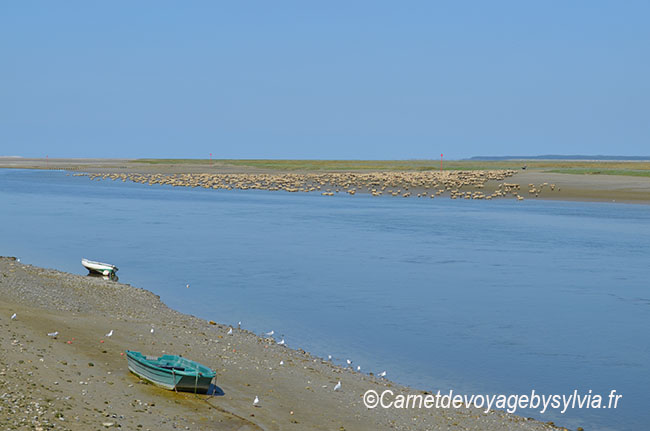 Baie de Somme : Que faire en un week-end ?