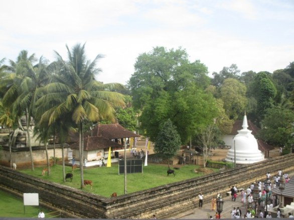 temples Kandy