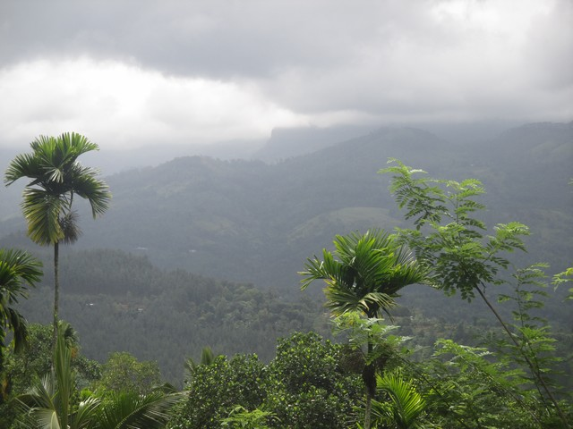 nature autour de Kandy