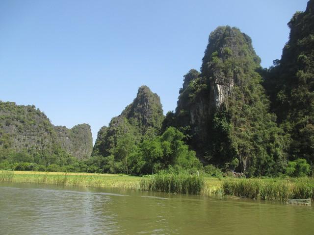 Les pícs au bord de la rivière