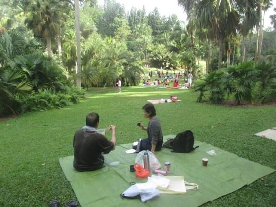 pique-nique jardin botanique Singapour