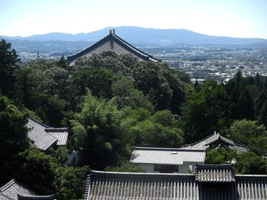 vue depuis sanctuaire parc de Nara