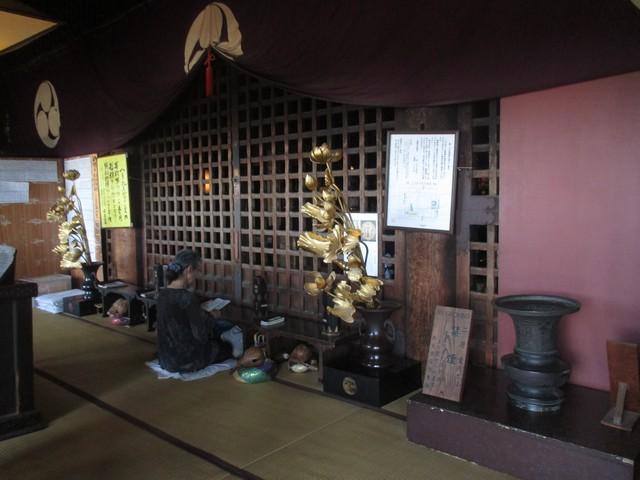 sanctuaire parc de Nara
