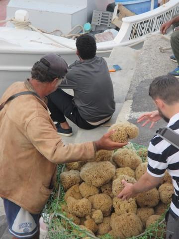 vendeur d'éponges port d'Heraklion