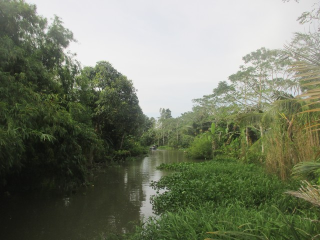 petit canal delta du Mékong