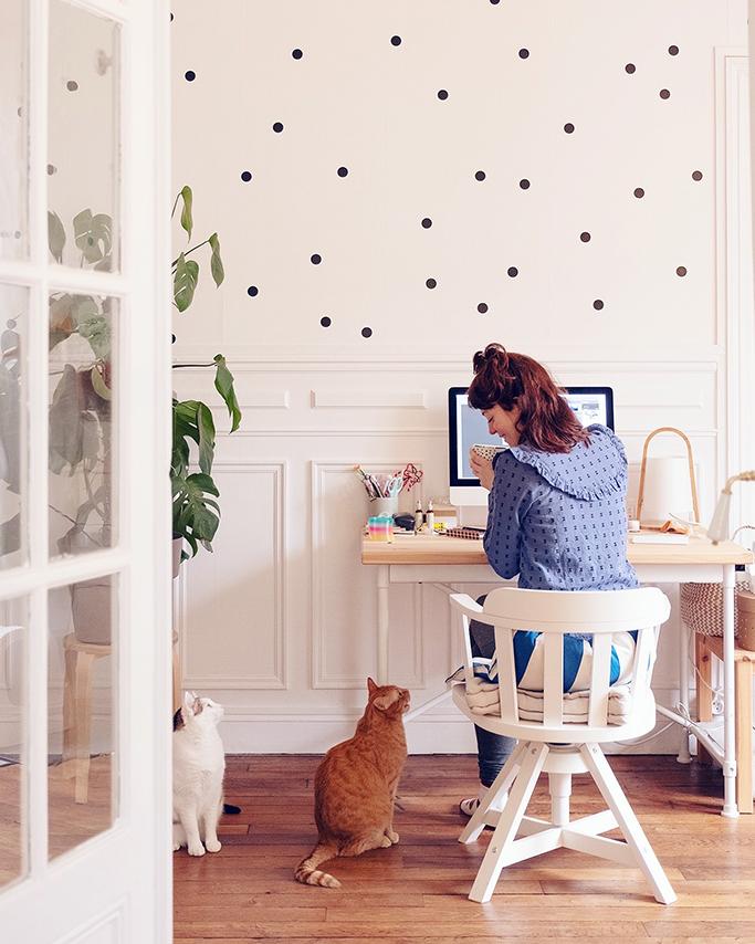 Travail en appartement avec des chats