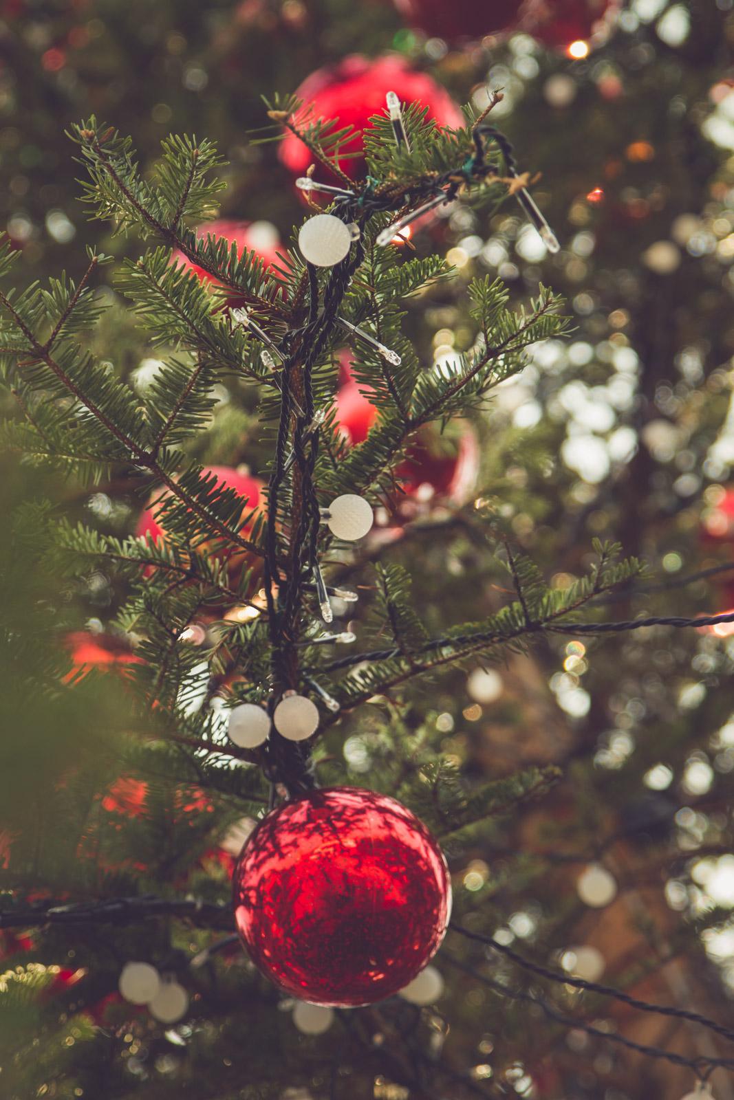 Noël navabi