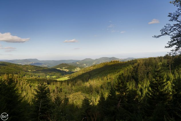 Alsace 2016 - 059