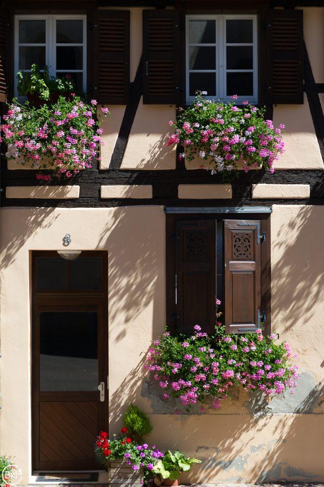 Alsace 2016 - 097