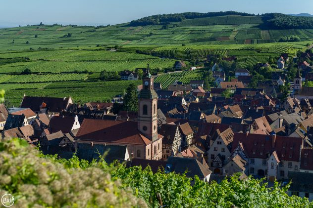 Alsace 2016 - 124