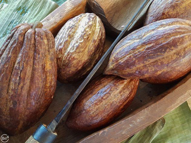Callebaut Bean To Bar - 007