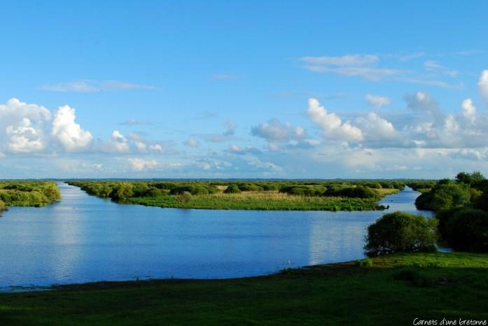 Le Lac de Grand-Lieu
