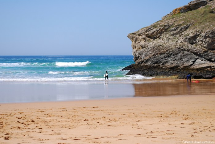 surf-donant