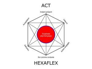 Hexaflex