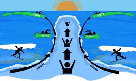 La vie à la plage : se débattre dans le courant (ACT)