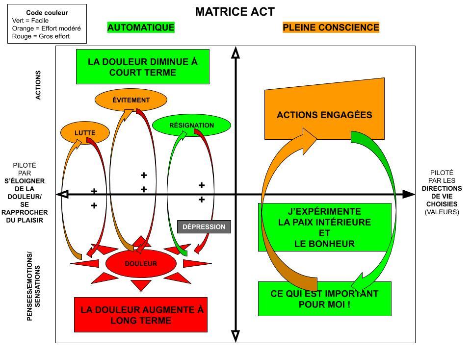 Matrice ACT