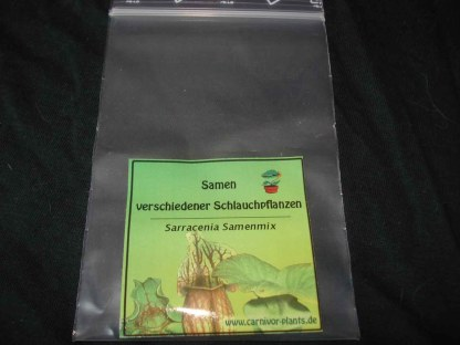 Sarracenia-Samenmix