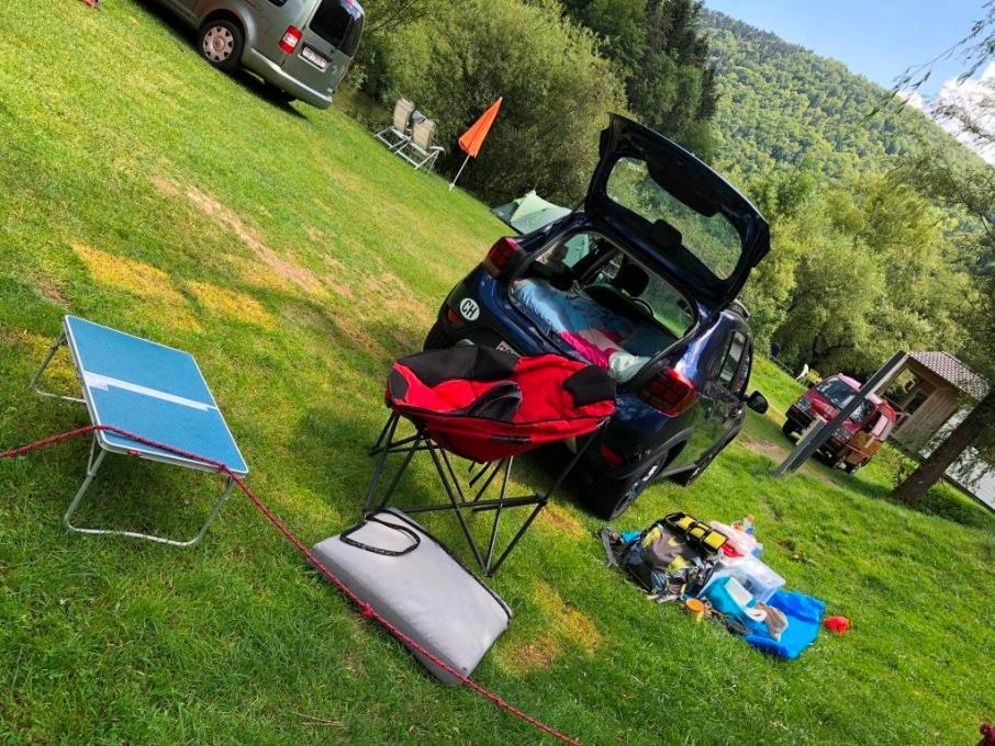 camping tariche chien