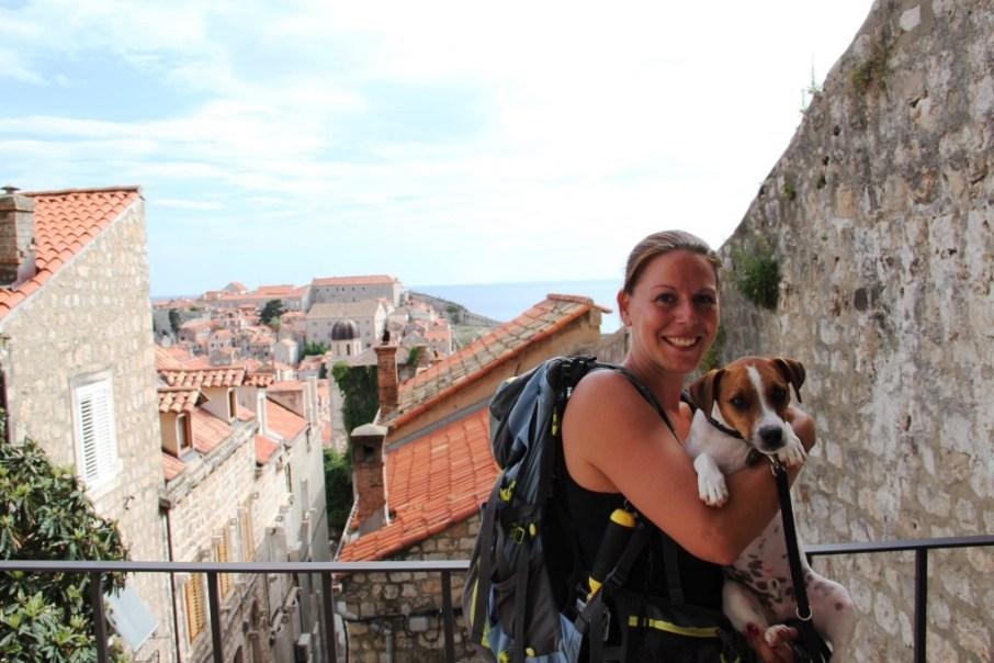 Dubrovnik chien