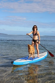 Cani paddle_La Saline