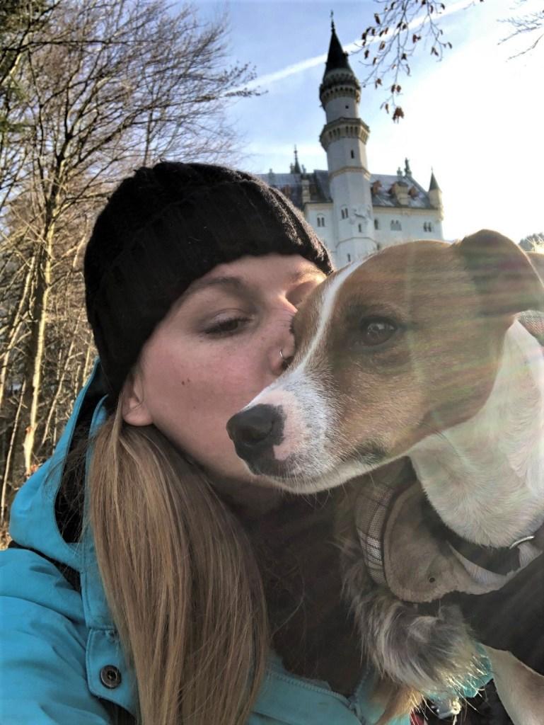 Chateau Neuschwanstein chien dog hund