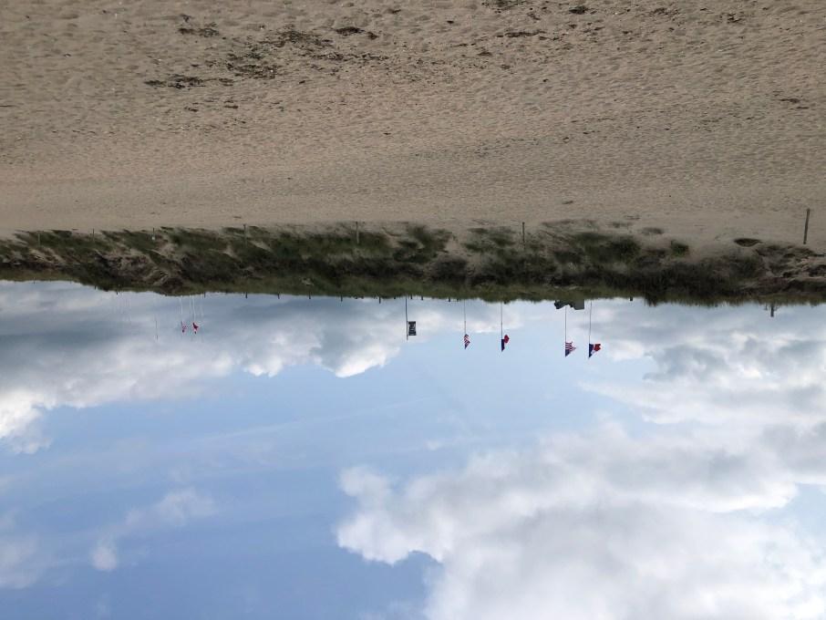 Utah Beach chiens dogs hund