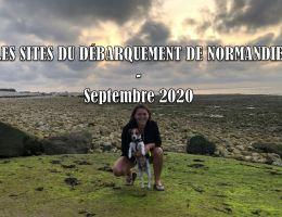 Voyager en Normandie avec son chien