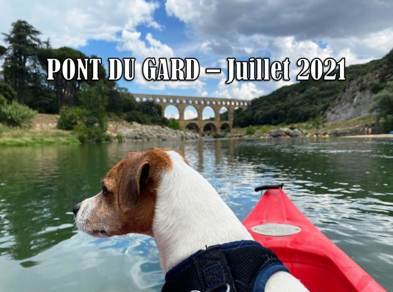 Pont du Gard chien accepté canoë