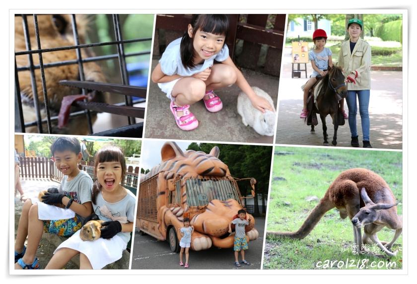 九州自然動物園~叢林巴士餵猛獸、抱抱可愛的小動物,親子必遊豐富好玩的野生動物園