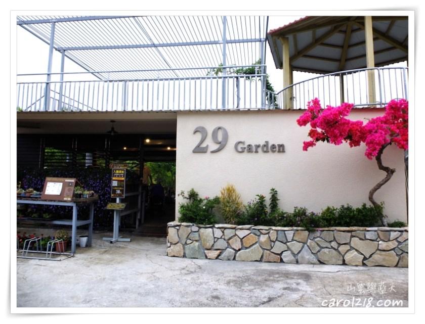 29號花園,中部景觀餐廳,南投市,南投景觀咖啡,南投景觀餐廳,多肉植物,採果,景觀咖啡,桑葚