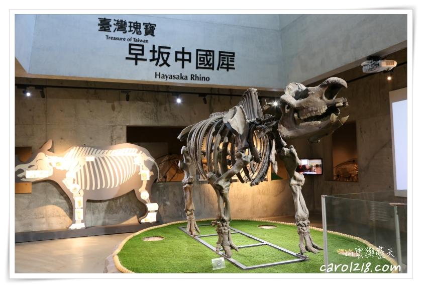 化石博物館,博物館,台南,台南左鎮,台南景點,台南親子景點,台南親子遊,左鎮化石園區,菜寮