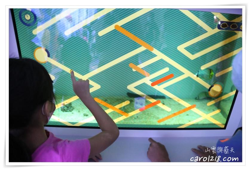 Xpark,Xpark交通,Xpark新都會型水生公園,Xpark紀念品,Xpark評價,Xpark門票,xpark心得,八景島,桃園水族館,橫濱八景島,水族館
