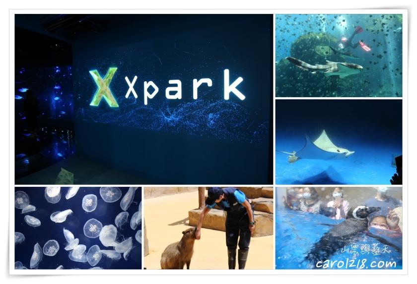 [桃園]Xpark新都會型水生公園~充滿奇幻現代感的新型水族館公園