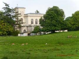 Schlosskirche mit Wildgehege (c) Carola Peters