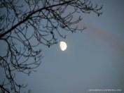 Herbst-Abendhimmel (c) CArola Peters